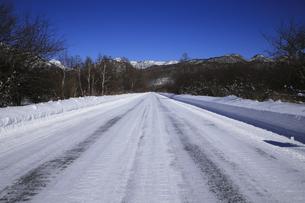 冬の奥日光 戦場ヶ原を通る国道120号線 日本ロマンチック街道の写真素材 [FYI04307227]