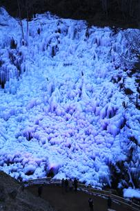 芦ヶ久保の氷柱 ライトップされた埼玉県横瀬町冬のイベントの写真素材 [FYI04307271]