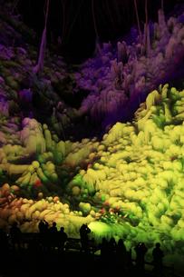 芦ヶ久保の氷柱 ライトップされた埼玉県横瀬町冬のイベントの写真素材 [FYI04307276]