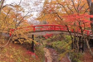 群馬県 河鹿橋の写真素材 [FYI04307413]