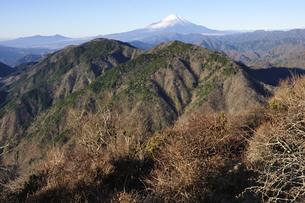 丹沢の鍋割山より望む富士山の写真素材 [FYI04307469]