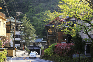 箱根塔ノ沢温泉付近の旅館ホテル群の写真素材 [FYI04307565]
