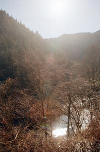 晴れた冬の秩父の山の写真素材 [FYI04307627]