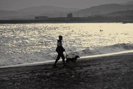 ビーチで犬の散歩(モノクロ シルエット)の写真素材 [FYI04307757]
