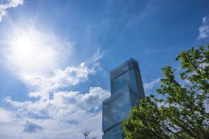高層ビルと朝空の写真素材 [FYI04307767]