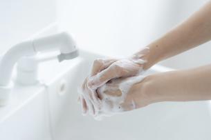手洗いをする女の子の手元の写真素材 [FYI04307852]