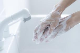 手洗いをする女の子の手元の写真素材 [FYI04307854]