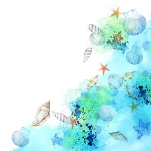 貝がら水彩画のイラスト素材 [FYI04308003]