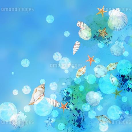 貝殻と泡 水彩画のイラスト素材 [FYI04308004]