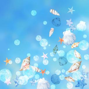 貝殻と泡 青背景のイラスト素材 [FYI04308005]