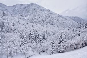 冬の山の写真素材 [FYI04308145]