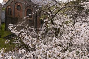蹴上発電所と桜の写真素材 [FYI04308210]