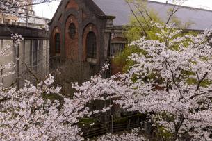 蹴上発電所と桜の写真素材 [FYI04308212]