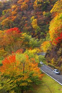 日本の道100選 紅葉の日光 いろは坂 イロハ坂の写真素材 [FYI04308234]