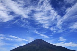 花の都公園と世界文化遺産の富士山の写真素材 [FYI04308316]