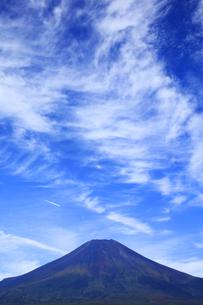 花の都公園と世界文化遺産の富士山の写真素材 [FYI04308318]