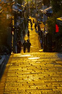 京都の夕景の写真素材 [FYI04308540]