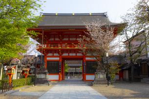 八坂神社の南楼門の写真素材 [FYI04308555]