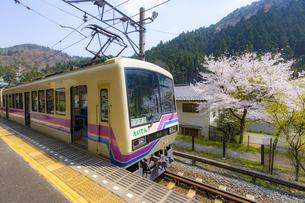 桜と叡山電車の写真素材 [FYI04308563]