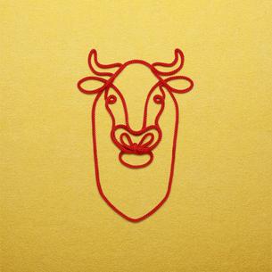 赤い紐でつくった丑(ウシ)のイメージの写真素材 [FYI04308610]