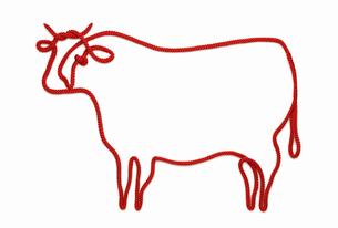 赤い紐でつくった丑(ウシ)のイメージの写真素材 [FYI04308613]