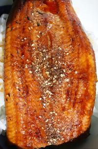 うな丼 ウナギの蒲焼き 山椒の写真素材 [FYI04309242]