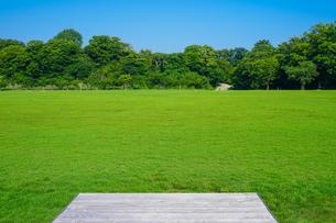 一面の芝生が広がる金沢城新丸広場(縁台)の写真素材 [FYI04309371]