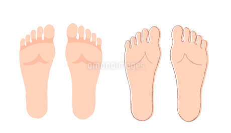 足の裏のイラスト素材 [FYI04309462]