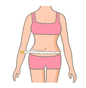 ウエストを測る メジャーのイラスト素材 [FYI04309464]