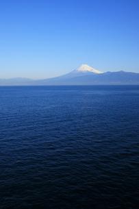 伊豆半島西浦から眺める駿河湾と世界文化遺産の富士山の写真素材 [FYI04309740]
