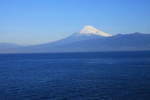 伊豆半島西浦から眺める駿河湾と世界文化遺産の富士山の写真素材 [FYI04309741]