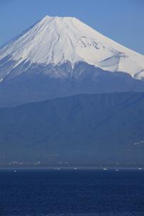 伊豆半島西浦から眺める駿河湾と世界文化遺産の富士山の写真素材 [FYI04309742]