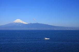 伊豆半島西浦から眺める駿河湾と世界文化遺産の富士山の写真素材 [FYI04309747]
