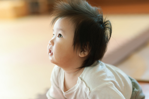 見上げる赤ちゃんの写真素材 [FYI04309833]
