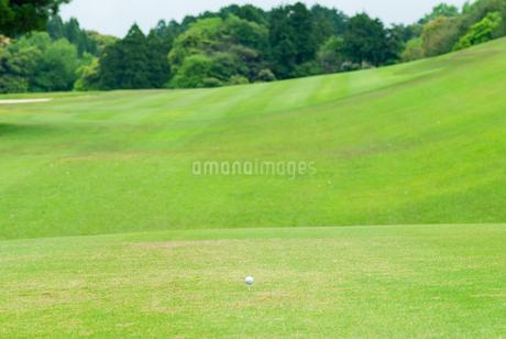 ゴルフ場のティーグラウンドの写真素材 [FYI04309881]