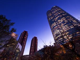 東京都 毛利庭園から眺めた六本木ヒルズの写真素材 [FYI04309984]