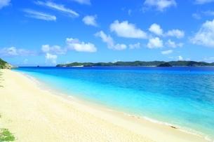 阿嘉島の北浜(ニシバマ)ビーチの写真素材 [FYI04310235]