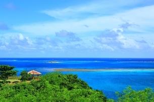 知念岬公園と沖縄の海の写真素材 [FYI04310330]