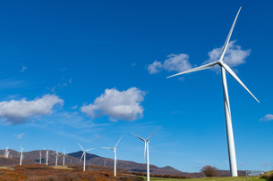 北海道伊達市 風力発電の風車の写真素材 [FYI04310817]