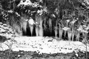 埼玉県秩父の三十槌の氷柱  Misotsuchi icicle  モノクロの写真素材 [FYI04310957]