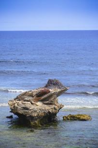 オーストラリア・西オーストラリア州のフリーマントルの沖合約18kmのインド洋に浮かぶロットネスト島から見た鳥の巣がある岩のある光景の写真素材 [FYI04311297]