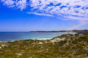 オーストラリア・西オーストラリア州のフリーマントルの沖合約18kmのインド洋に浮かぶロットネスト島の木々と草と雲のある光景の写真素材 [FYI04311305]