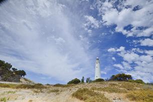 オーストラリア・西オーストラリア州のフリーマントルの沖合約18kmのインド洋に浮かぶロットネスト島のワジャマップ灯台と丘に生える沢山の草と白い雲の光景の写真素材 [FYI04311342]