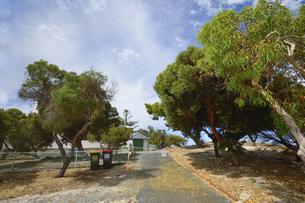 オーストラリア・西オーストラリア州のフリーマントルの沖合約18kmのインド洋に浮かぶロットネスト島の木々と建物とダストボックスのある光景の写真素材 [FYI04311522]