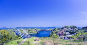 長崎県 桜 西海橋 (西海の丘公園) の写真素材 [FYI04311560]