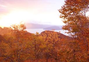 紅葉の十和田湖の朝焼けの写真素材 [FYI04311613]