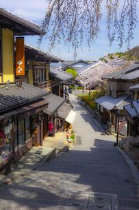 桜咲く春の三年坂の写真素材 [FYI04311730]