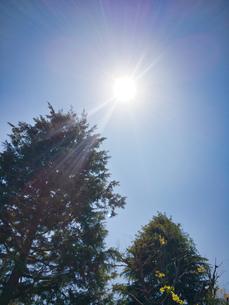 2020 4月 青空と太陽の写真素材 [FYI04311769]