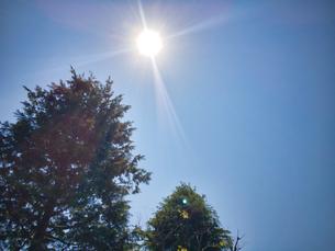 2020 4月 青空と太陽の写真素材 [FYI04311770]