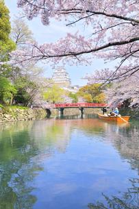 姫路城天守と桜に観光学習船の写真素材 [FYI04311789]